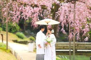 265213_岡山_梅・桜和装ロケーション