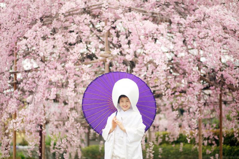 京都好日_トップ画像2