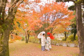 280792_鹿児島_Season Photo