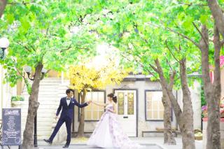 256132_愛知_オレンジスタジオNAGOYA Popular photos
