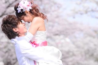 249663_茨城_【もうすぐこの季節】桜ロケーション