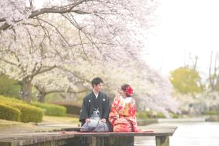 249673_茨城_【もうすぐこの季節】桜ロケーション