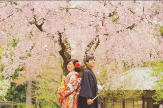 17504_愛知_名古屋城
