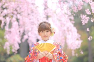 17505_愛知_名古屋城