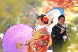 17511_愛知_名古屋城