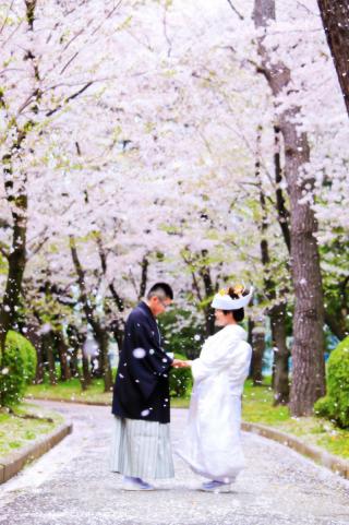 17503_愛知_名古屋城