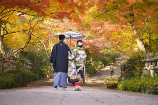 200210_大阪_ピックアップフォト