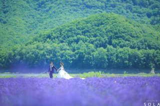 【夏季限定:北海道】富良野撮影プレミアムプラン-7/8/9月の3ヶ月間限定出店-全データ200カット以上