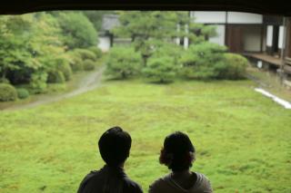 289800_京都_新緑