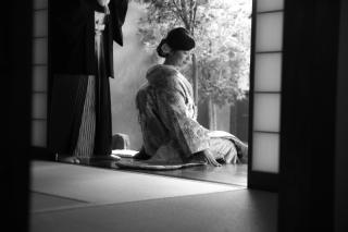 132288_京都_屋内庭園ロケーションフォト