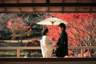 233991_兵庫_秋の紅葉♪ロケーション撮影