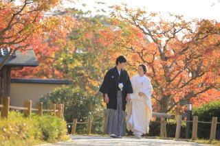 233993_兵庫_秋の紅葉♪ロケーション撮影