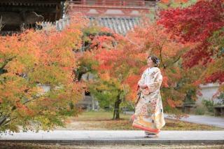 233999_兵庫_秋の紅葉♪ロケーション撮影