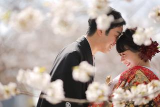 295477_福岡_はる、桜♪ロケーション撮影
