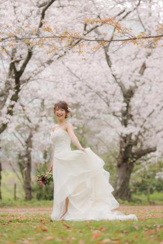 295500_福岡_はる、桜♪ロケーション撮影