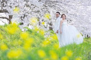 295496_福岡_はる、桜♪ロケーション撮影