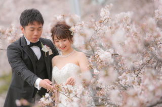 295499_福岡_はる、桜♪ロケーション撮影