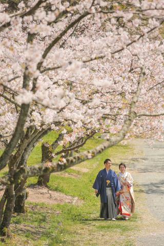 295471_福岡_はる、桜♪ロケーション撮影