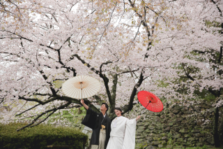 295479_福岡_はる、桜♪ロケーション撮影
