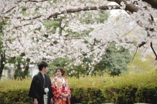 295487_福岡_はる、桜♪ロケーション撮影