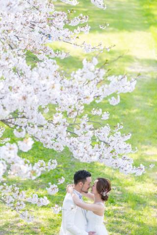 295493_福岡_はる、桜♪ロケーション撮影