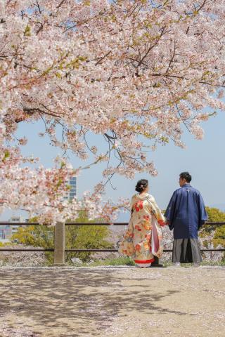 295473_福岡_はる、桜♪ロケーション撮影