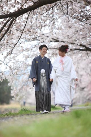 216717_静岡_桜・菜の花・梅 など