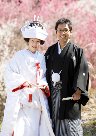 232108_静岡_桜・菜の花・梅 など