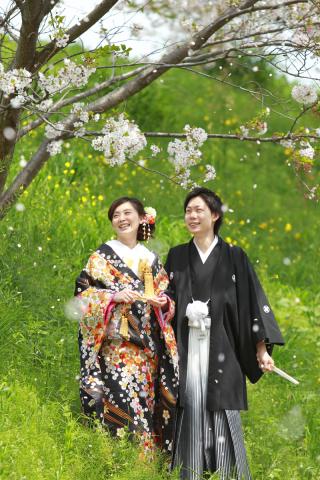 232085_静岡_桜・菜の花・梅 など