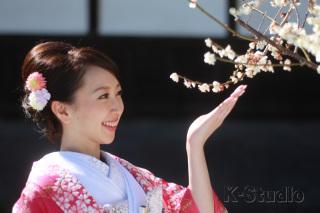 206742_静岡_桜・菜の花・梅 など