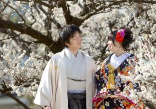 232116_静岡_桜・菜の花・梅 など