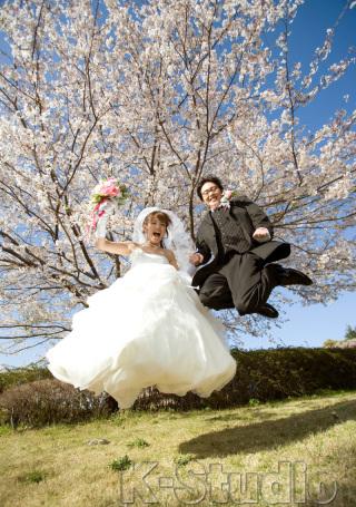 206740_静岡_桜・菜の花・梅 など
