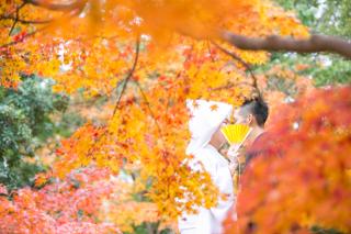 121738_静岡_ロケ撮影【四季】