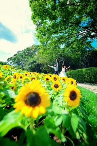 263378_福岡_◆BEST30 PHOTO◆