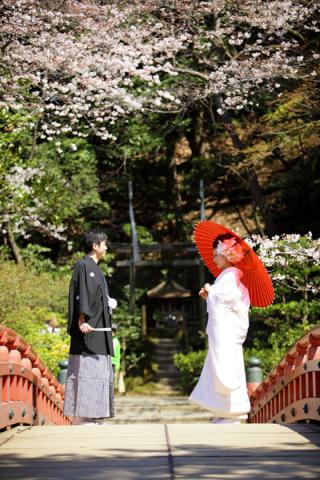 280718_東京_【和&洋】桜・紅葉