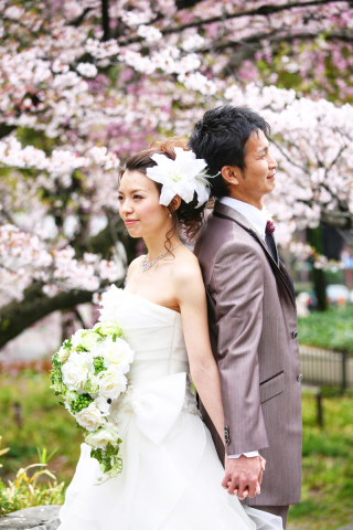 280717_東京_【和&洋】桜・紅葉