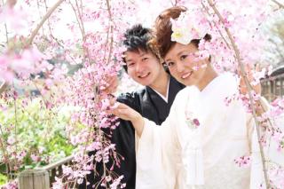 280703_東京_【和&洋】桜・紅葉