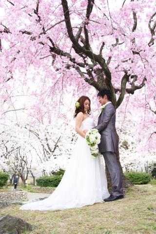 280701_東京_【和&洋】桜・紅葉