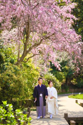 280721_東京_【和&洋】桜・紅葉