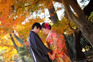 280726_東京_【和&洋】桜・紅葉