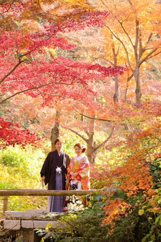 280719_東京_【和&洋】桜・紅葉