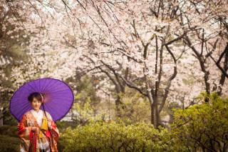 16780_東京_和装ロケーション撮影 @日本庭園