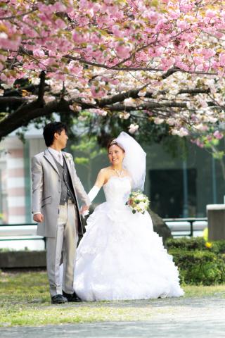 280723_東京_【和&洋】桜・紅葉
