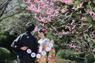 280714_東京_【和&洋】桜・紅葉