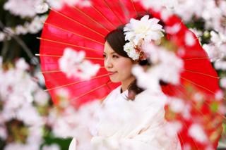 280716_東京_【和&洋】桜・紅葉