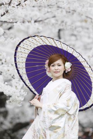202926_神奈川_ロケーション撮影 【桜・紅葉】