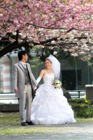 202968_神奈川_ロケーション撮影 【桜・紅葉】