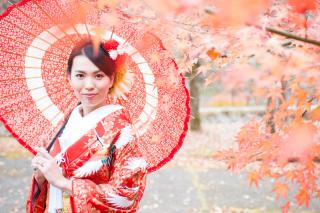 202896_神奈川_ロケーション撮影 【桜・紅葉】