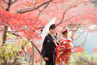 279279_神奈川_【和&洋】桜・紅葉