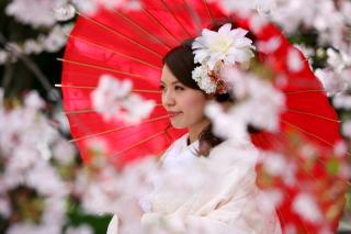 202972_神奈川_ロケーション撮影 【桜・紅葉】